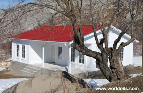 Fast Building Houses for sale