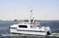CAT Type Fast Ferry Boat for Sale